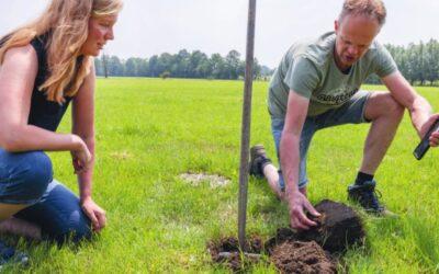 LTO NOORD / BOER AAN HET ROER: Data combineren met gezond boerenverstand