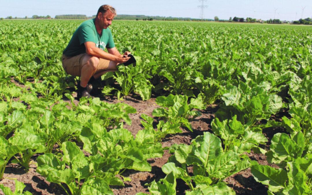 NIEUWE OOGST: FieldScout maakt smart farming beter toegankelijk